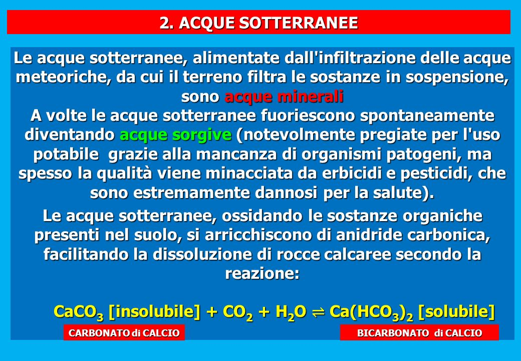 CaCO3 [insolubile] + CO2 + H2O ⇌ Ca(HCO3)2 [solubile]